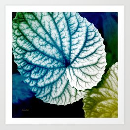 Blue Leaf Abstract Art Art Print