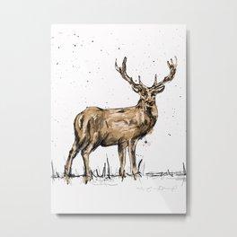Brown Deer Metal Print