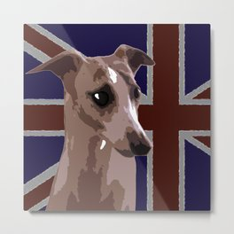 Buddy the whippet Metal Print