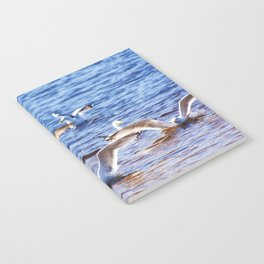 Landing Party Notebook