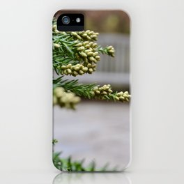 Christmas Plants iPhone Case
