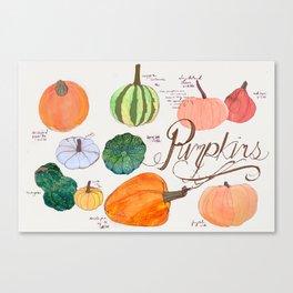 Fresher than the Farmers Market: Pumpkins Canvas Print