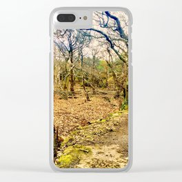 Second path Clear iPhone Case