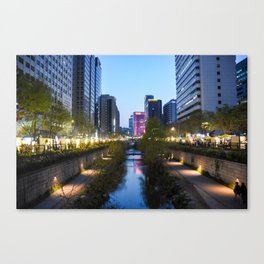 Stream at night Canvas Print