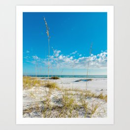 View From the Dune Art Print