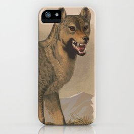 Vintage Illustration of a Gray Wolf (1874) iPhone Case