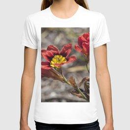 Sparaxis T-shirt