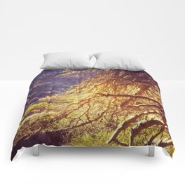 Pfieffers Forest Comforters
