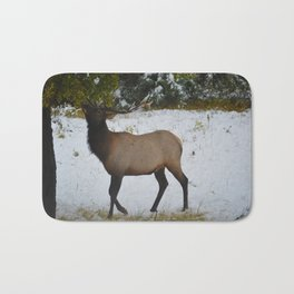 Elk reaches up for the green leaves in an early September snowfall, Jasper National Park Bath Mat