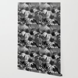 Cone Flower Echoes In Black & White Wallpaper