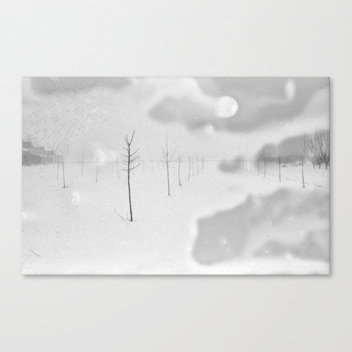Snow Etching Print Canvas Print