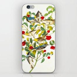 Vintage Scientific Bird & Botanical Illustration iPhone Skin