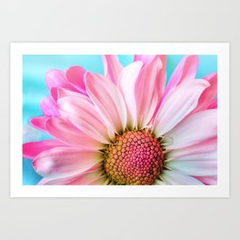 Beautiful Pink Flower Macro, Turquoise Blue Backdrop Art Print