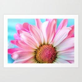 Beautiful Pink Flower Macro, Turquoise Blue Backdrop Art Print