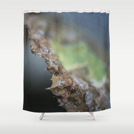 First Floor Shower Curtain