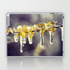 Freezing Rain Laptop & iPad Skin