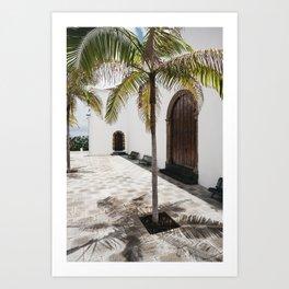 Palm tree growing in the street. La Palma, Canary Island. Art Print