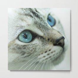 Mimi the cat Metal Print
