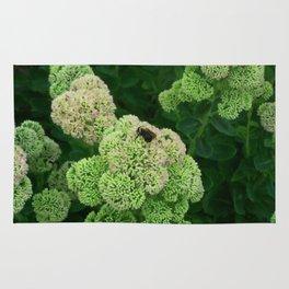 Floral Print 022 Rug