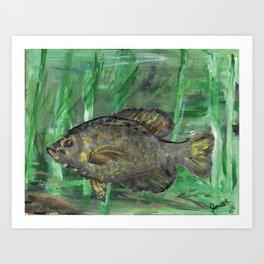 Black Crappie Fish in River Water Art Print