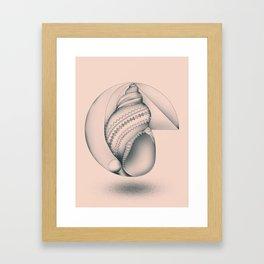 Mathematical Nurture Framed Art Print