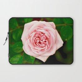 Beautiful Pink Rose Laptop Sleeve