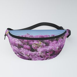 """View of """"Mount Rhodendron"""" on a clear day Fanny Pack"""