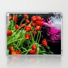 Waterfalls Laptop & iPad Skin