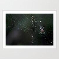 Web Redemption Art Print