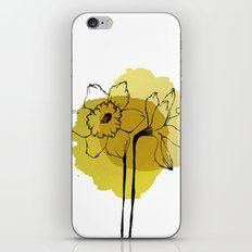 daffodils iPhone & iPod Skin