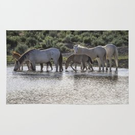 Reaching the Waterhole Rug