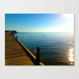 everybody needs inspiration Canvas Print