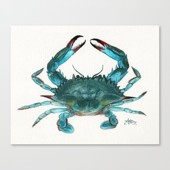"""Blue Crab"" by Amber Marine ~ Watercolor Painting, Illustration (c) 2013 Canvas Print"