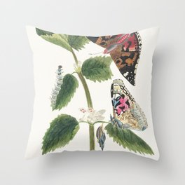 Antique watercolor  of nettle butterfly in various life stages published in 1824 by MP Throw Pillow