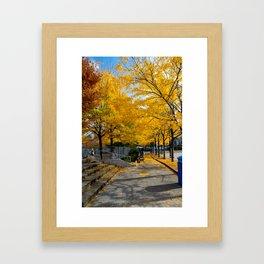 Autumn in NY Framed Art Print