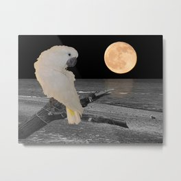 Umbrella Cockatoo on a Moonlit Beach A242 Metal Print