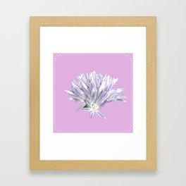 Flower   Pink Chive Floral   Nadia Bonello Framed Art Print
