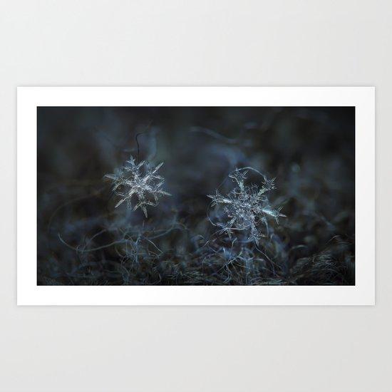 Real snowflake macro photo - When winters meets 2 Art Print