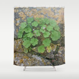 Life on a stone wall Shower Curtain
