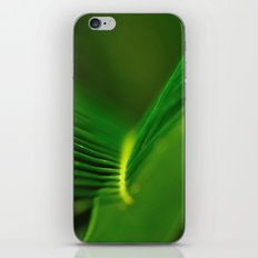 Fern Lines iPhone & iPod Skin