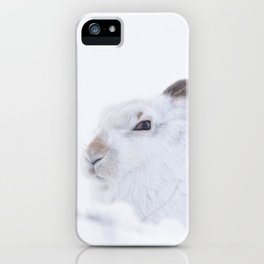 white mountain hare (lepus timidus) sitting on snow iPhone Case