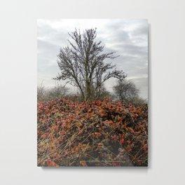 Turning Seasons Metal Print