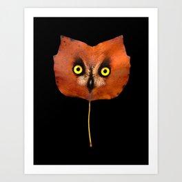 Autumn Owl-3 Art Print