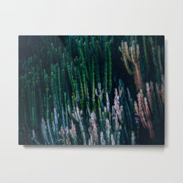Cactus Forest Succulent Cacti In A Dark Dense Field Metal Print