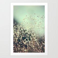 Water Jewels Art Print