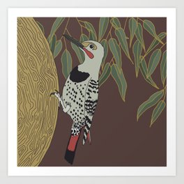 Flicker Bird and Botanical Illustration Art Series Art Print