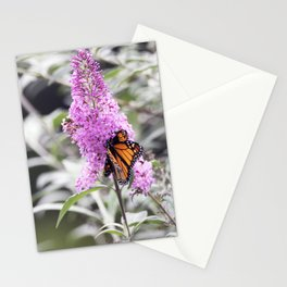 Longwood Gardens Autumn Series 126 Stationery Cards