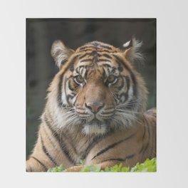 Look into my eyes by Teresa Thompson Throw Blanket