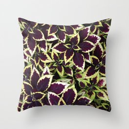Coleus Plant Leavs Throw Pillow