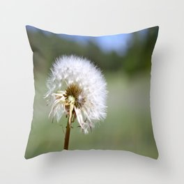 Don't Blow Away Throw Pillow